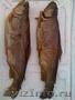 Форель охлажденная,  копченая,  вес 1, 5-2, 2кг