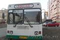 автобус марз 42191