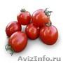 Семена Китано. Предлагаем купить  cемена томата АСВОН F1 - Изображение #2, Объявление #1214347