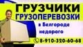 Грузоперевозки,Грузчики,Газель Переезды,Пианино,Вывоз мусора, Объявление #1647663